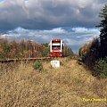 SA132-004 jako pociąg 58725 Chojnice - Piła na szlaku między Skórką a Piła Głowną #kolej #jesień #szynobus #SA132 #PKP