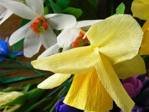 narzyze w tle.. #kwiaty #bibuła #narcyzy