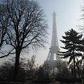 Paryż 2008 #barka #transport #Sekwana #rzeka #most #Paryż #bulwar #WieżaEiffla #plac #pomnik #zwiedzanie #hotel #wspomnienia