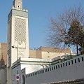 Paryż , Instytut Muzułmański, meczet z minaretem #Paryż #Meczet #Sekwana #zwiedzanie #Sorbona #kawiarnie