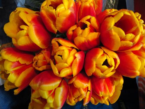 #kwiaty #tulipany #wiosna #bukiety