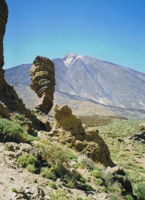 Skan z odbitki. W tle wulkan El Teide - 3718 m npm. Nie dość, że wysoko, to jeszcze okrutnie siarką śmierdzi :)