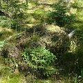 Paski - cmentarz wiejski