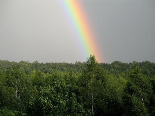... wcale nie było burzy, a zdjęcie zrobione jest z balkonu ...**** ulub. cleo ****