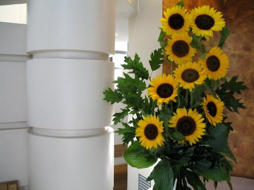 ... w kościele ... #bukiety #kościół #kwiaty #słoneczniki