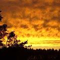 Dzisiejszy zachód słońca #zachód #słońca