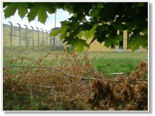 Zakład Karny w Potulicach powstał na terenie byłego obozu pracy. Jego początków upatrywać należy w działalności utworzonego w październiku 1944 roku przez Ministerstwo Bezpieczeństwa Publicznego - Wydziału Więziennictwa.W Potulicach w czasie II wojny ś...