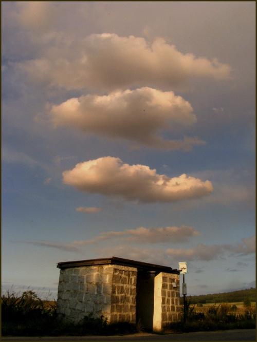 Wniebowstąpienie czy duch PKS u ulatuje ;) ? #przystanek #PKS #wiata