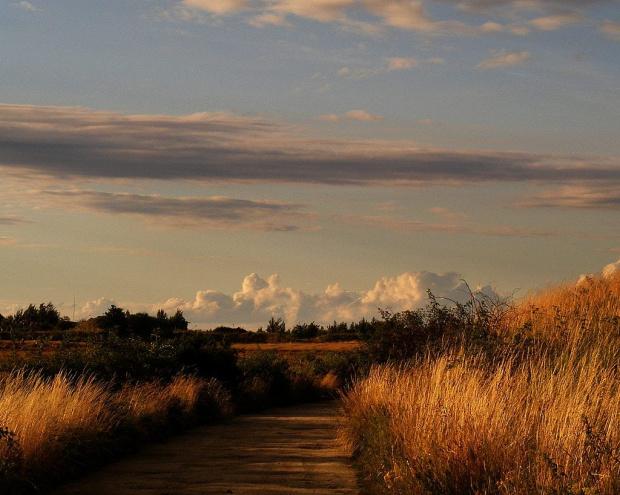lato odchodzi niepostrzeżenie.. #pola #jesień #płomienie