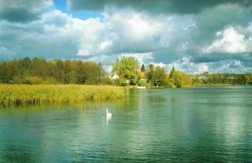 Skan z odbitki. Mrągowo, jezioro Czos #jezioro #Mazury