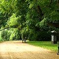 Łazienki Królewskie latem #Park #ŁazienkiKrólewskie #lato