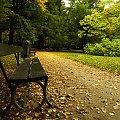 #park #jesień #ławka