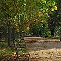 Łazienki Królewskie #ParkJesienią #ławka #liście