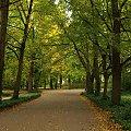 Łazienki Królewskie #alejka #park #jesień #ŁazienkiKrólewskie