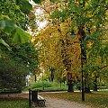 Łazienki Królewskie #liście #ławka #ParkJesienią