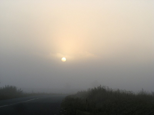 zamglenie.. #mgła #pejzaż