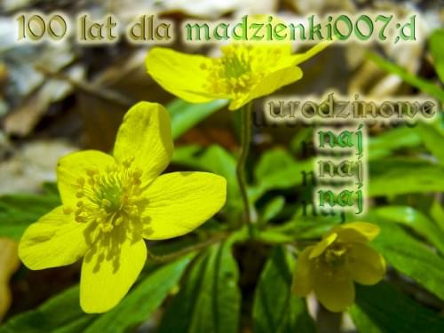 prezencik od ciach52 :))) dziekuje