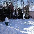 mrozna zima - styczen 2009 #zima #mroz #snieg #psy