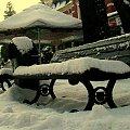 latem siedzą na niej kuracjusze #zima #śnieg #słońce #park #ławka