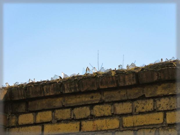 na straży własności #mur #szkło #ogrodzenie #ochrona
