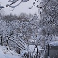 na zimowo ... #zima #rzeka #Opava #śnieg #Chomiąża