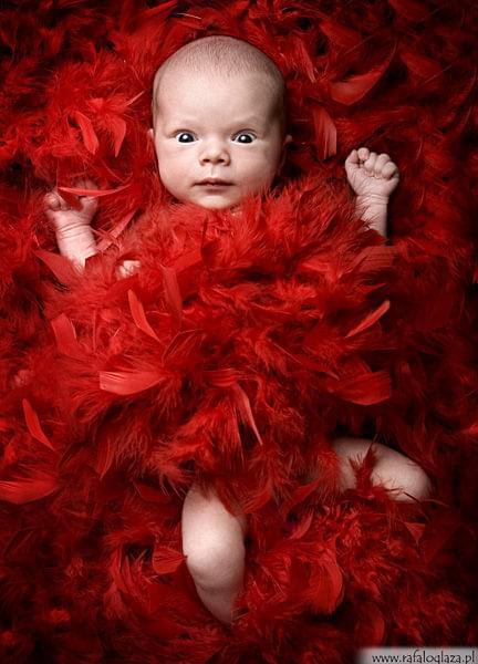 zdjęcia dzieci, noworodki, zdjęcia ślubne, fotografia ślubna