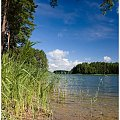 Krutynia (2008) #jeziora #rzeki #mazury #krutynia #spływ #kajak