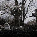 St Mawnan cemetary #cmentarz #kosciol