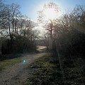 #natura #niebo #słońce #drzewa #ścieżka