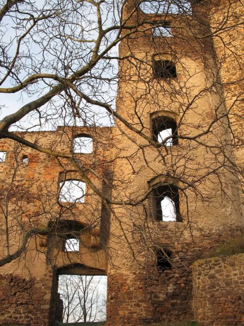 #Świny #zamek #ruiny