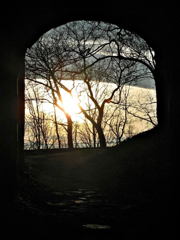 ruiny zamku Świny (tu można dowiedzieć się więcej: http://zamki.net.pl/zamki/swiny/swiny.php) #Świny #zamek #ruiny