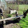Stara ławeczka w ogródeczku-moim #ławka