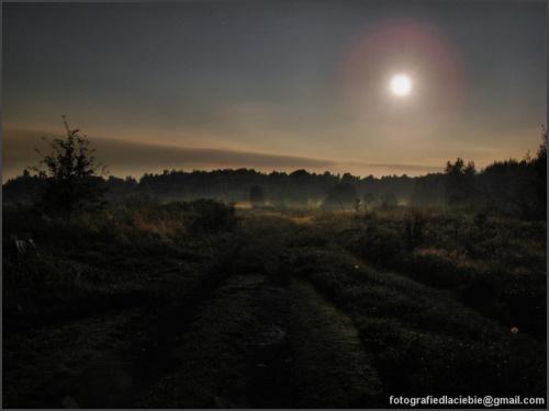 Nocny krajobraz ... #krajobraz #noc #księżyc #łąki #mgła