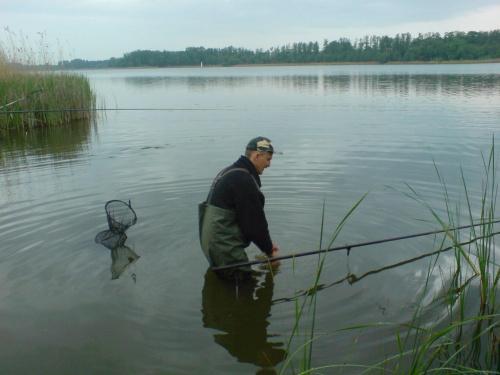 Darek #ryby #wędkarstwo #baszta #Buk #Niepruszewo