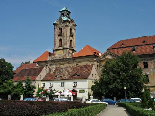 kompleks zamkowo- pałacowy Bibersteinów- Promnitzów w Żarach (zdjęcie zrobione przy okazji krótkiego pobytu w tym mieście) #ruiny #zamek #Żary