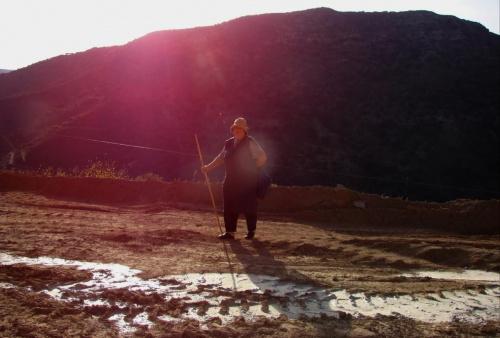 niezwykłe spotkanie wysoko w górach #KretaZachdnia #Kissamos #Paleohora #GóryLefki