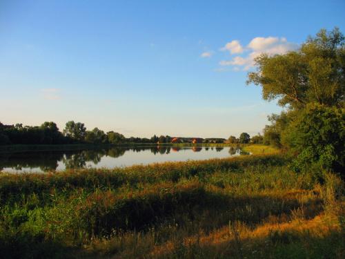 nad jeziorem (w moich rodzinnych stronach) #jezioro #natura #niebo #drzewa #Lubięcin