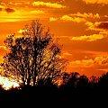Zachód słońca #lezajsk #leżajsk #zachód #słońce #słońca #zachod #chmurykrajobraz #widok #las #drzewa