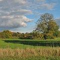 #łąki #niebo #cień #trawa #chmury #drzewa