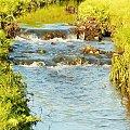 Potok w ok. Lubonia inne ujęcia. #Luboń #potok