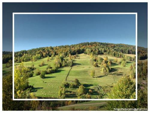 Widokówka #Krynica #Wierchomla #góry #widoki #panorama #drzewa #natura #jesień