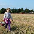 byłyśmy na wykopkach ... (21.09.2011) #łąki #pola #wieś #wnusia #Chomiąża