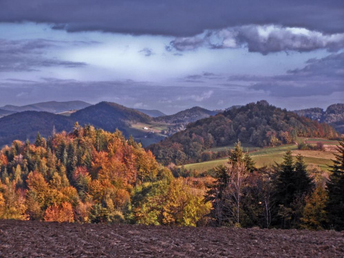 Beskid Wyspowy, okolice Wierzbanowej. To zdjęcie nie oddaje piękna tamtejszych widoków :) #góry #jesień #las