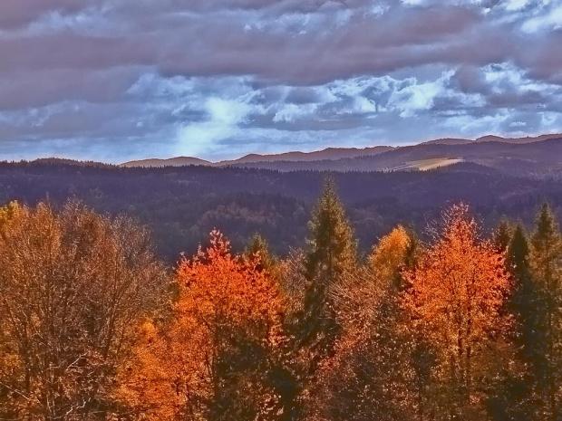 Widok z Góry Parkowej w Krynicy. #góry #las #jesień